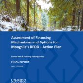 Assessment of Financing Mechanisms and Options for Mongolia's REDD + Action Plan