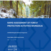 Rapid Assessment of Forest Protection Activities in Mongolia