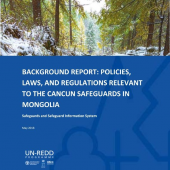 Background report: Policies, Laws, and Regulations Relevant to the Cancun Safeguards in Мongolia