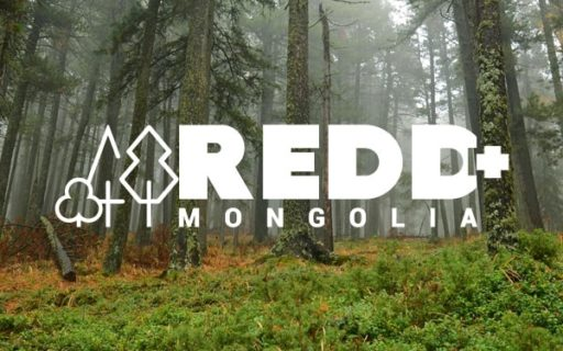 Vacancy & Procurement – Page 2 – REDD+ Mongolia National Programme
